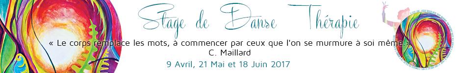 banniere-stage-dansetherapie3-2017.jpg