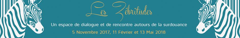 banniere-stage-zebritude-2017-2018.jpg